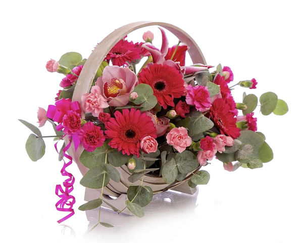 Picture of Basket of Pinks